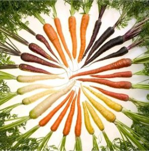 Phytochemicals give the color to carrots