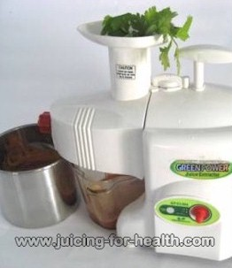 Juicing with Green Power Kempo KPE-1304