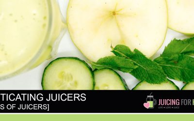 Guide: Masticating Juicers (AKA: Single Gear / Slow Juicers / Cold-Press Juicers)