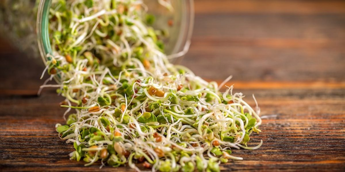 Consume Broccoli Sprout Juice That Contains More Sulforaphane In Fighting Cancer