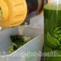 Green Juice for Blood Cleansing and Detoxification