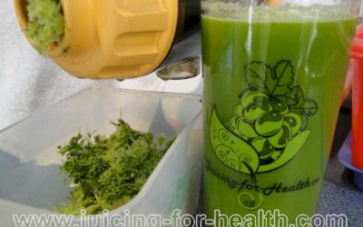 Blood Cleansing and Kidney Detox Juice