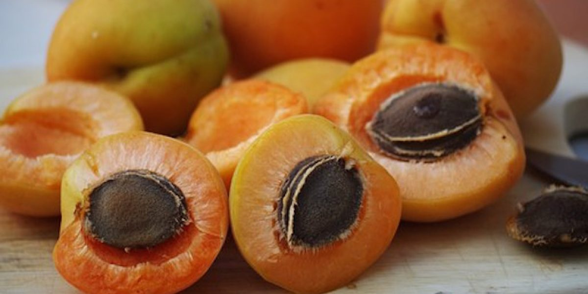 Vitamin B17 (Laetrile): The Greatest Cover-Up In The History Of Cancer Treatment