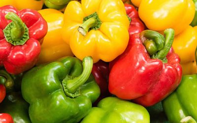 Health Benefits of Capsicum (Bell Pepper)