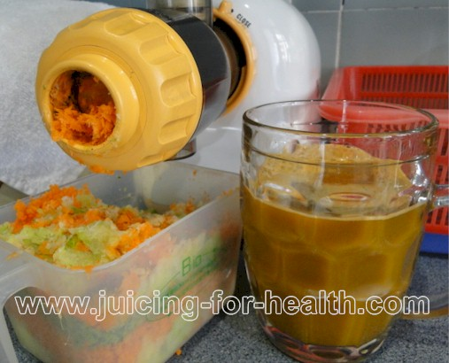 Cabbage Juice Slow Juicer : cabbage juice for ulcers