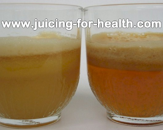 Compare single-gear masticating juicers