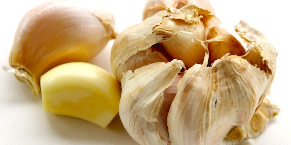 Antimicrobial Health Benefits of Garlic Wipe Out Disease-Causing Microbes In The Body