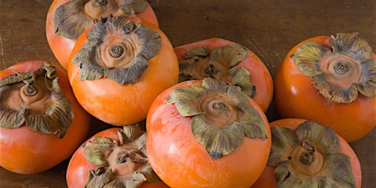 The Therapeutic Benefits of Persimmon Many People Don't Know About