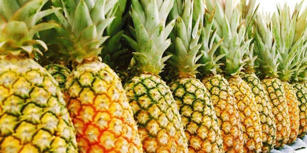 Pineapple Has Bromelain Enzyme That Kills Pain And Stops Coughing 500x Better Than Cough Syrup!