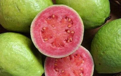 Guava Contains 4x More Vitamin C Than An Average Orange