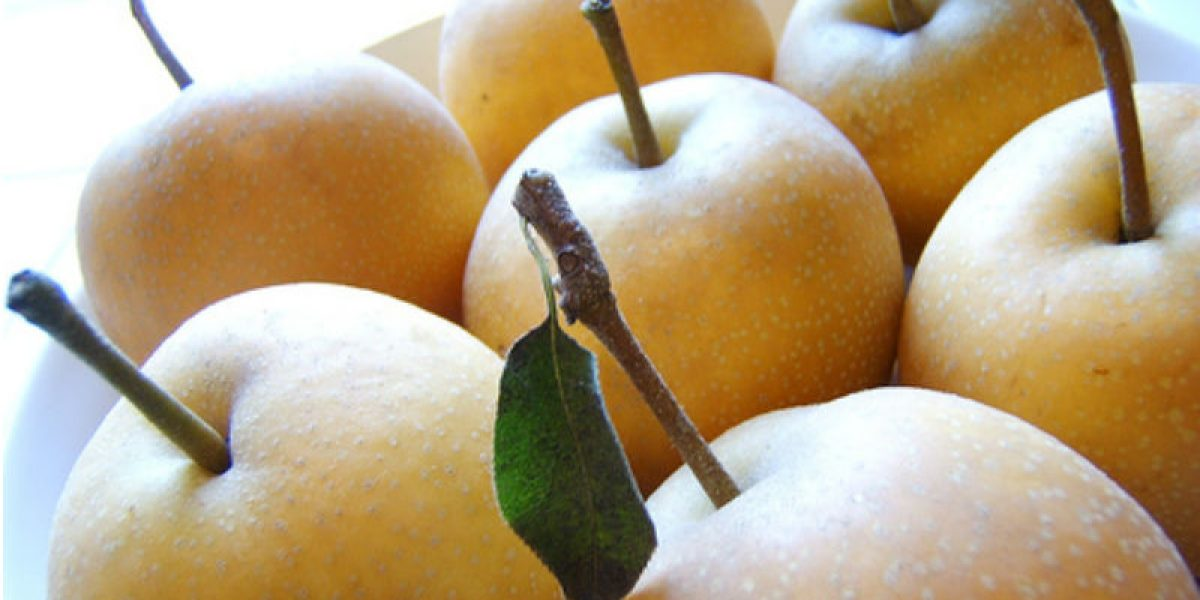 Health Benefits of Pear: Why You Need Pears in Your Next Juice