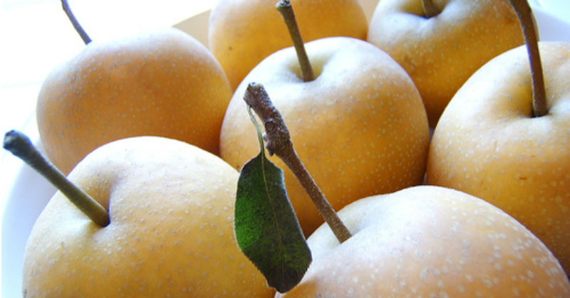 Health Benefits Of Pear Nutritional Facts And Consumption