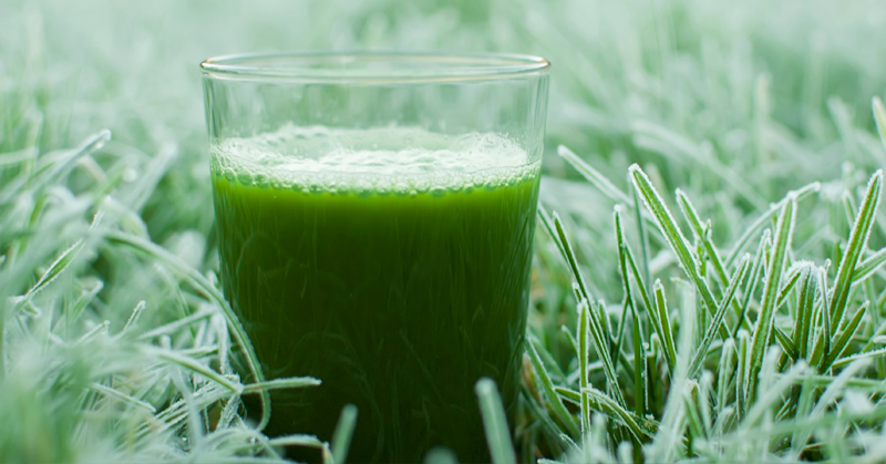 get more chlorophyll in your diet