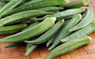Health Benefits of Okra (Lady's Fingers)
