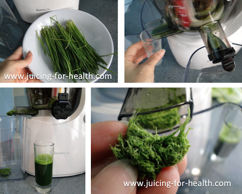 Kuvings Whole Slow Juicer Wheatgrass : Kuvings Wide Mouth Slow Juicer - Juicing for Health