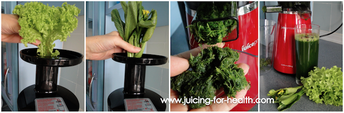 JuicePresso CJP-03 juicing greens