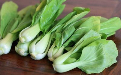 Health Benefits of Bokchoy