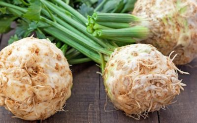 "Celeriac: This ""Ugly"" Root Is A Superfood For Cleansing Your Kidneys"