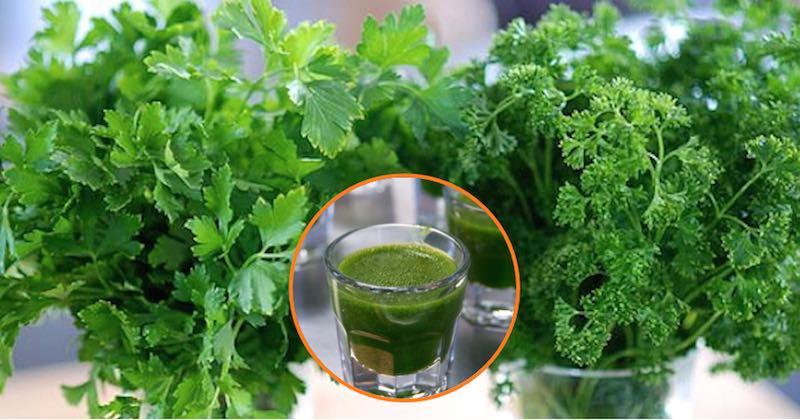 heavy metal detox drink with cilantro and parsley juice