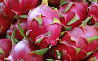 Dragonfruit Is An Exotic Fruit That Stabilizes Blood Sugar, Heals Lung Problems