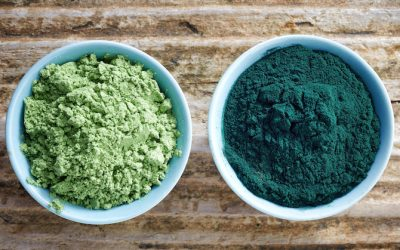 10 Powerful Reasons WHY You Need To Be Eating Spirulina And Chlorella