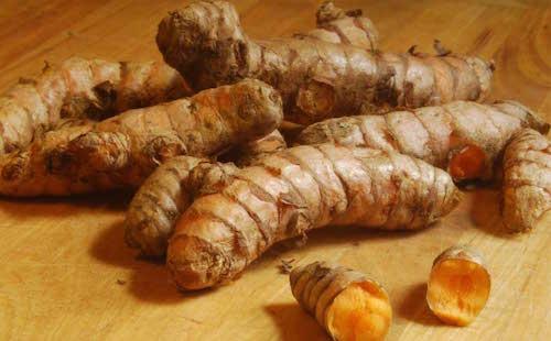 The health benefits of turmeric root