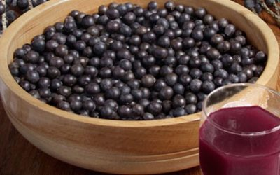 Acai Berry: Are You Eating This Super Food?