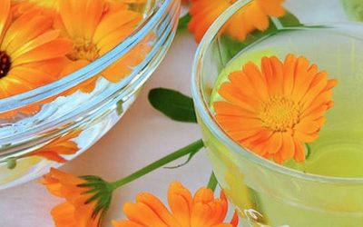 Surprising Health Benefits Of Calendula And How To Use It