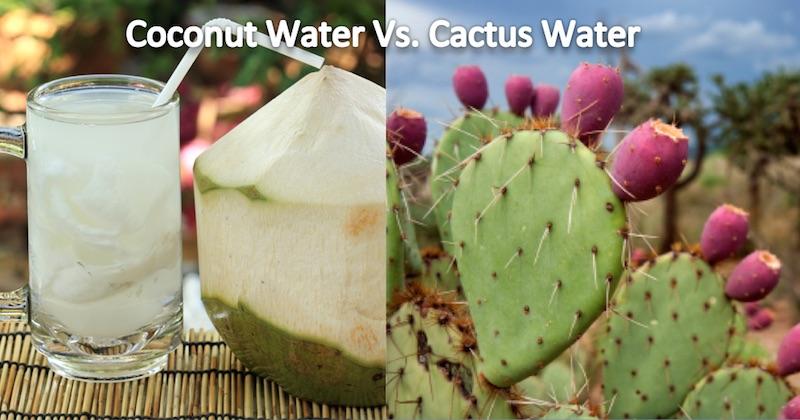 coconut water vs cactus water