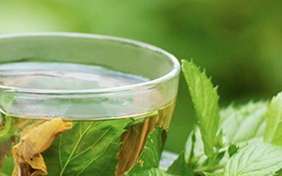 5 Scientifically-Proven Reasons To Drink Green Tea