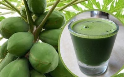 Health Benefits of Papaya Leaf Juice