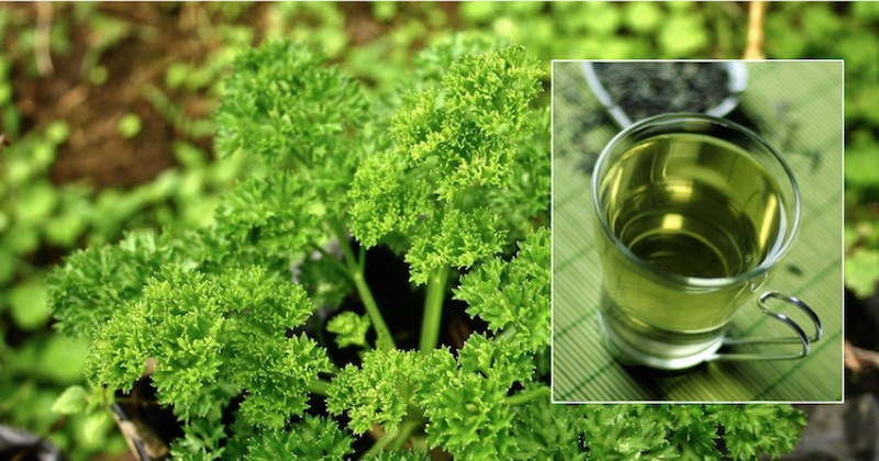 remedy swollen feet with parsley tea