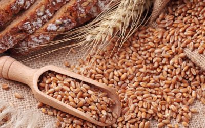 6 Top Tips For Replacing Refined Grains With Nutritious Alternatives
