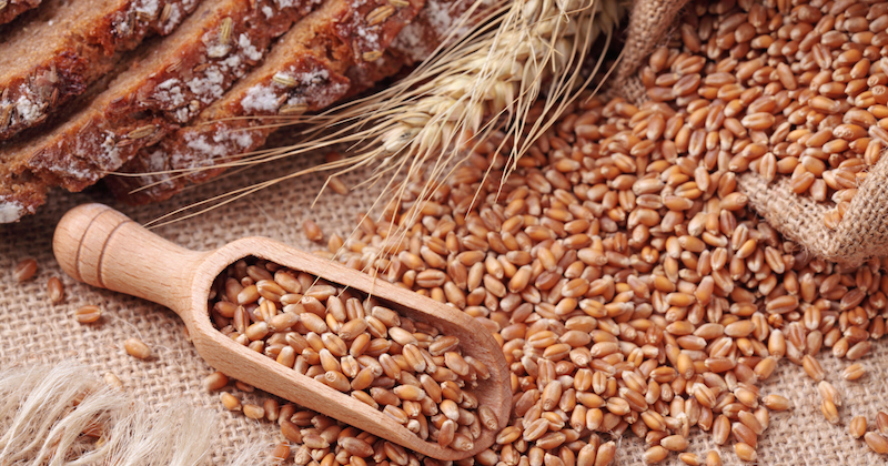 whole grains as nutritious alternatives to refined grains
