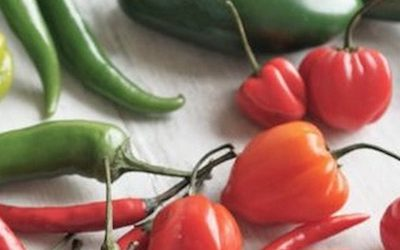 Studies Show That Eating Spicy Peppers Can Increase Your Lifespan