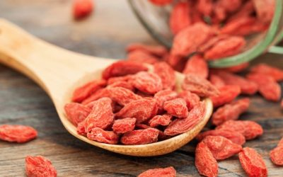 Eat Goji Berries To Reduce Hypertension And Inflammatory Problems
