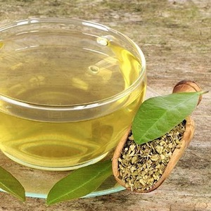 Yerba mate tea to boost metabolism