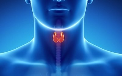 Causes And Symptoms Of Damaged Thyroid Gland And What Your Tongue Reveals