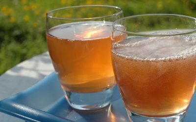 Improve Your Brain Power And Function By Consuming Homemade Kombucha Tea
