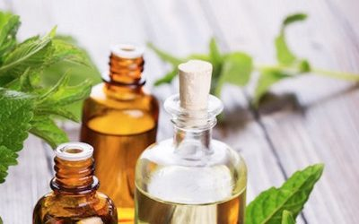 10 Awesome Reasons Why You Need More Peppermint Essential Oil In Your Life