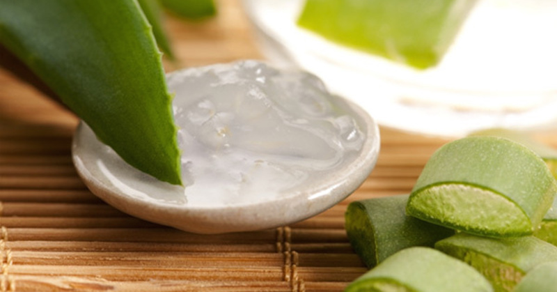 stop gum disease with aloe vera