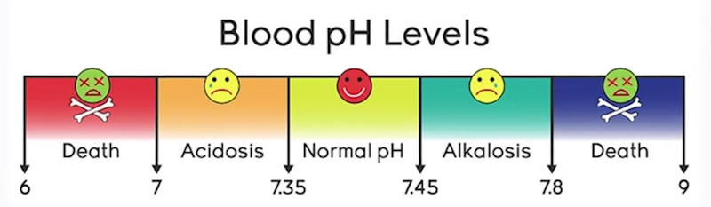 blood pH levels