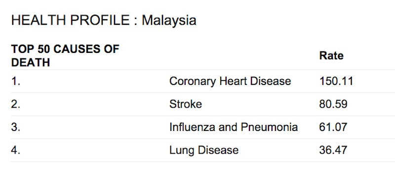 health profile of Malaysia top causes of death