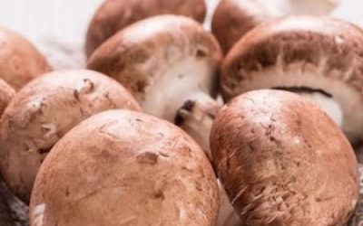 11 Amazing Things That Happen To Your Body When You Eat Mushrooms