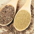 Triple Your Weight Loss Efforts With Cumin Seeds While Boosting Your Immune System And Liver Health