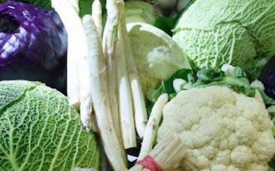The Colon Cancer-Causing Imbalance Many Vegetarians Don't Know About