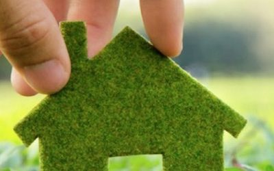How To Go Green At Home To Save The Environment And Money