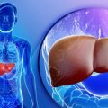 High Liver Enzymes In Your Blood Test Results And What They Mean
