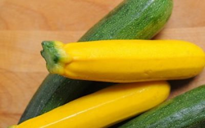 Add Power-Packed Zucchini In Your Diet To Enjoy Its Full Health Benefits