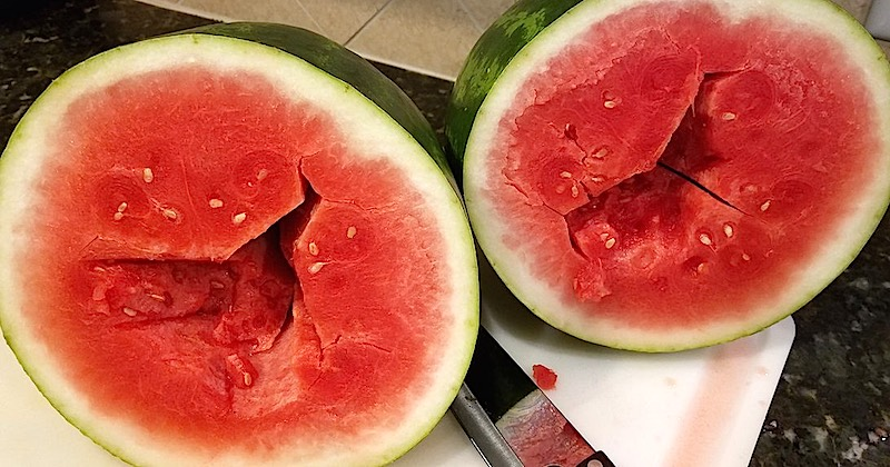 forchlorfenuron-treated watermelon